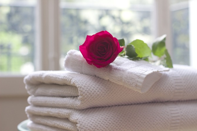 A rose on top of cashmere clothes.